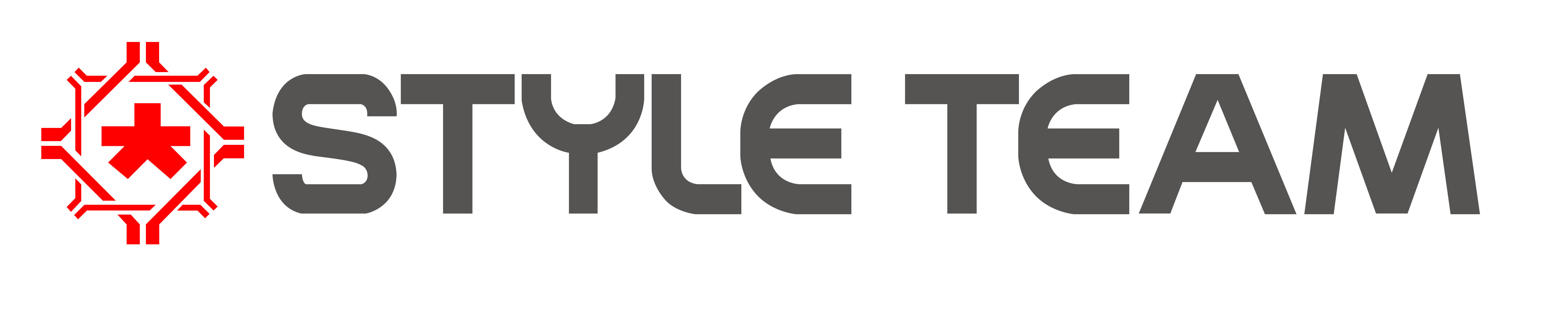 Style Team Industry - logo