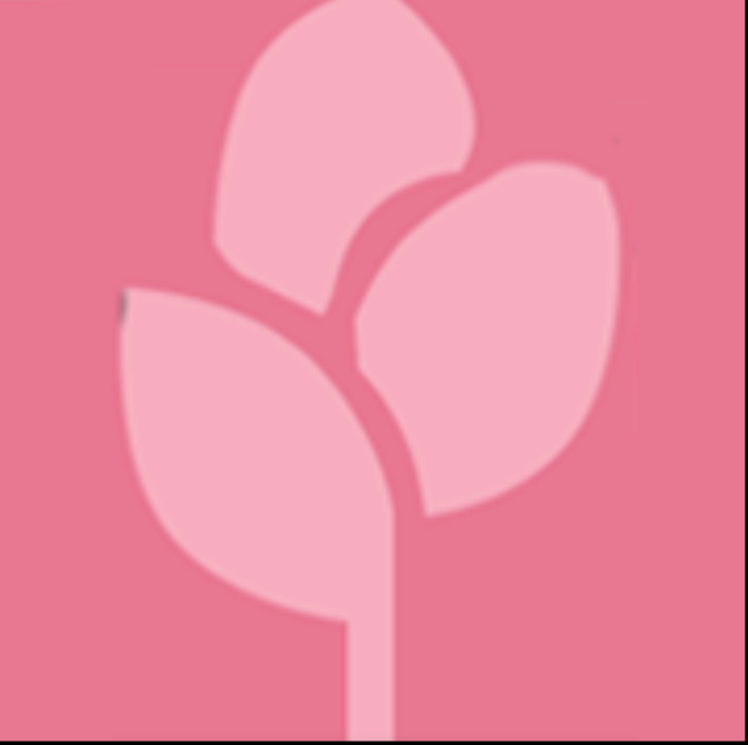 Noor Group - logo